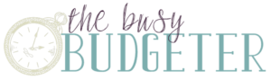 The Busy Budgeter