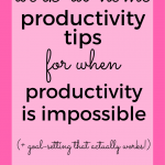 This chick wrote almost 3000 words on productivity tips for the work-at-home mom. She knows what she's talking about!