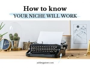 How to know your niche will work